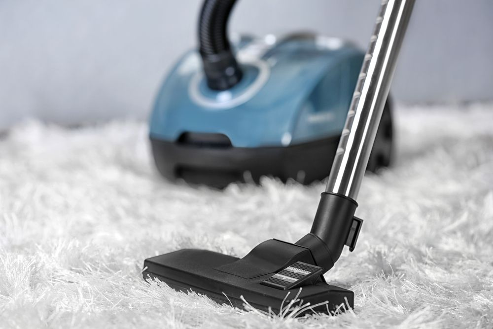 Best Vacuum Cleaner For Soft Carpet Www Allaboutyouth Net