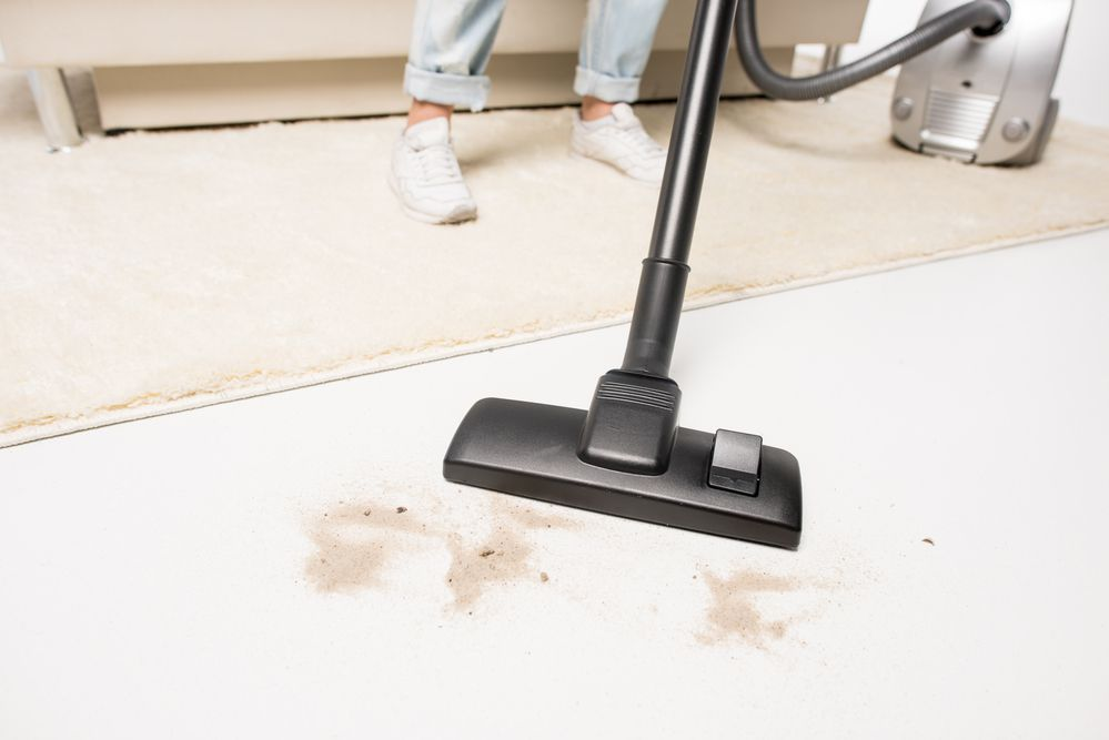 Best Shop Vac For Dust Collection