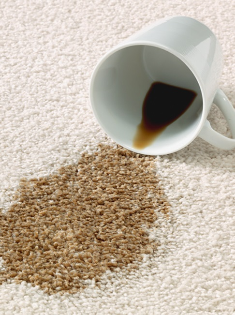 coffee stains wool carpet