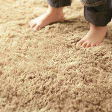 plush high-pile carpet