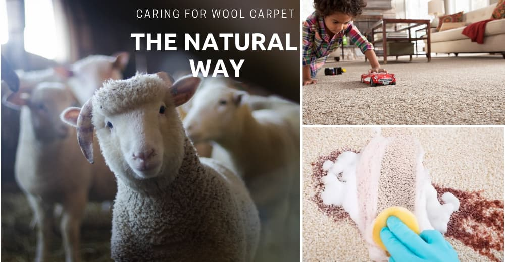 how to Safely Clean Wool Carpets and Rugs